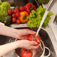 Foundation Certificate in Food Safety (Level 2)